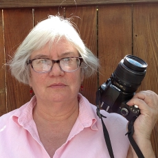 Maureen Battistella headshot